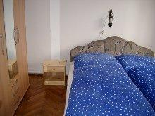 Zusatzbild Nr. 09 von Ferienhaus Balaton