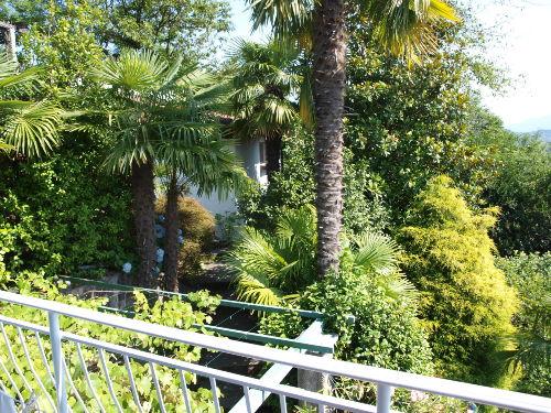 Blick in den Garten mit Garage