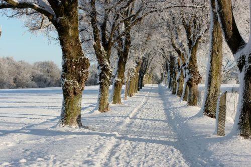 Winterspaziergänge wie im Märchen