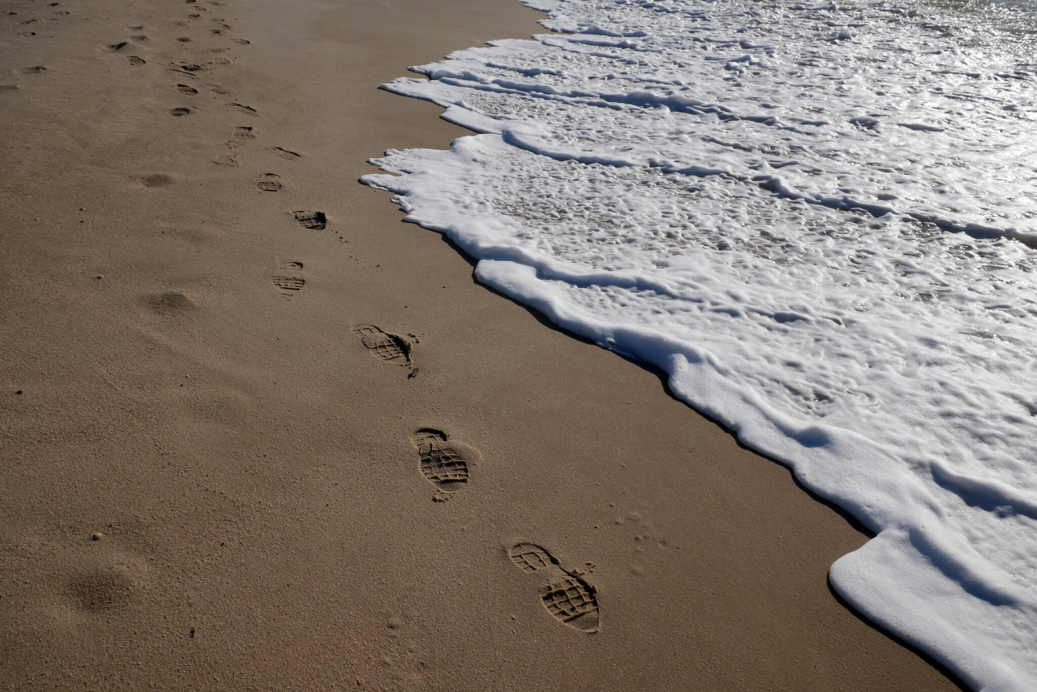 Kleine schnelle Strandläufer