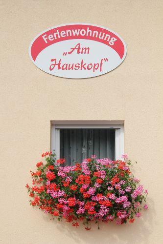 Zusatzbild Nr. 08 von Ferienwohnung 'Am Hauskopf'