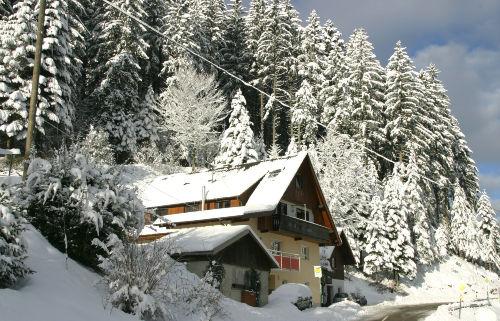 Winter im Lierbachtal