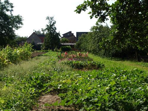Bauerngärten im Dorf