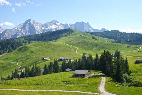 Almenurlaub Salzburger Land