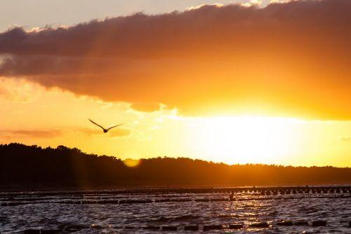 Sonnenuntergang am Strand vor Fewo