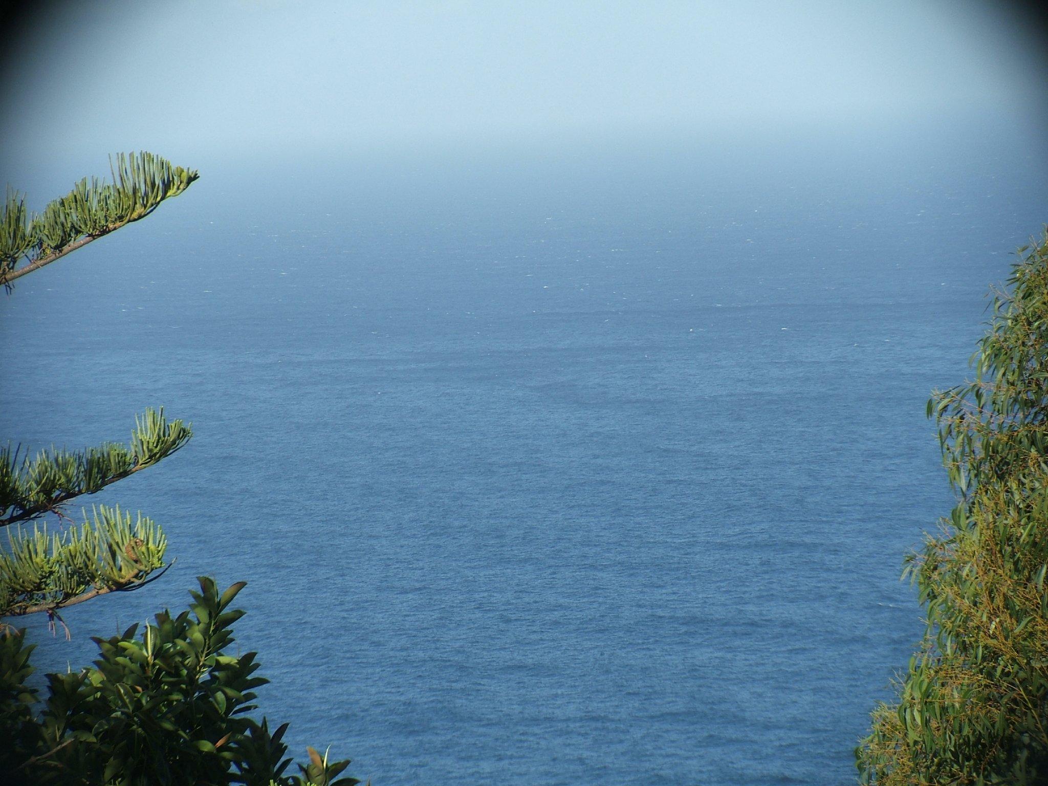 Zusatzbild Nr. 04 von Finca Teneriffa Romantica - Ferienwohnung Atico Marazul