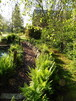 Gartenteich