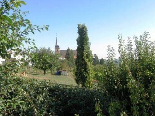 Zusatzbild Nr. 07 von Ferienwohnung Ingersheim - Neckarblick 1