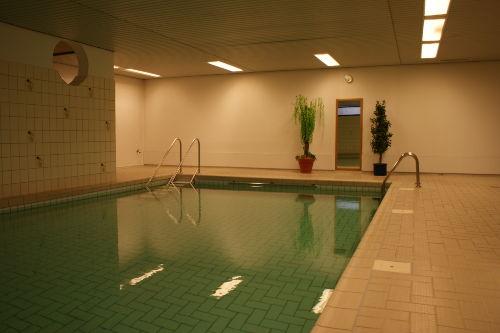 Schwimmbad und Sauna im Haus