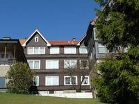 Ferienwohnung Geisterburg in Braunlage - kleines Detailbild