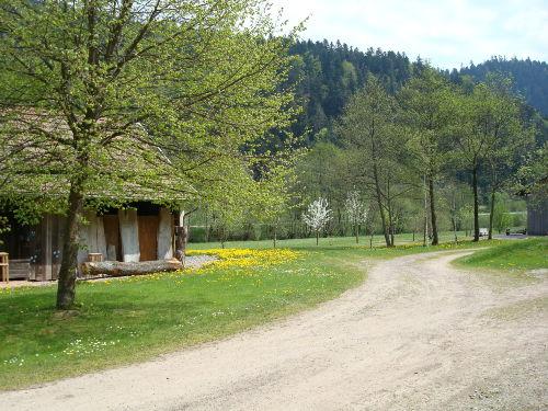 Das Grundstück im Frühling