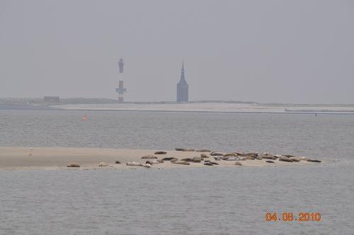 Seehundsbänke, Leuchtturm und Westturm