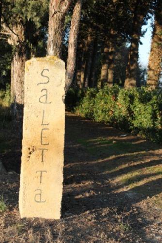 Zufahrt Saletta