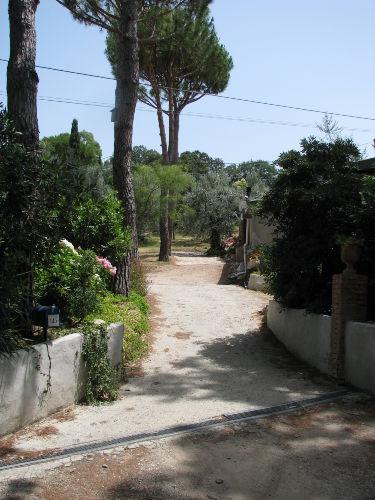Einfahrt zur Wohnung,links Parkplätze