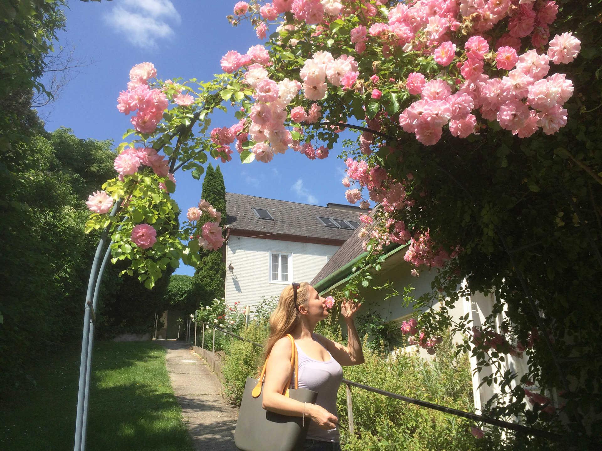 Garten hinter dem Haus, bei Apartment�3