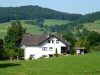 Ferienwohnung Finke - Wohnung Baumkrone in Frankenau-Altenlotheim - kleines Detailbild