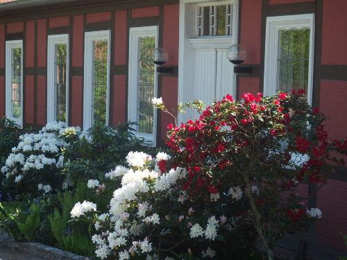 Zusatzbild Nr. 02 von Ferienwohnung Meyer-Hof