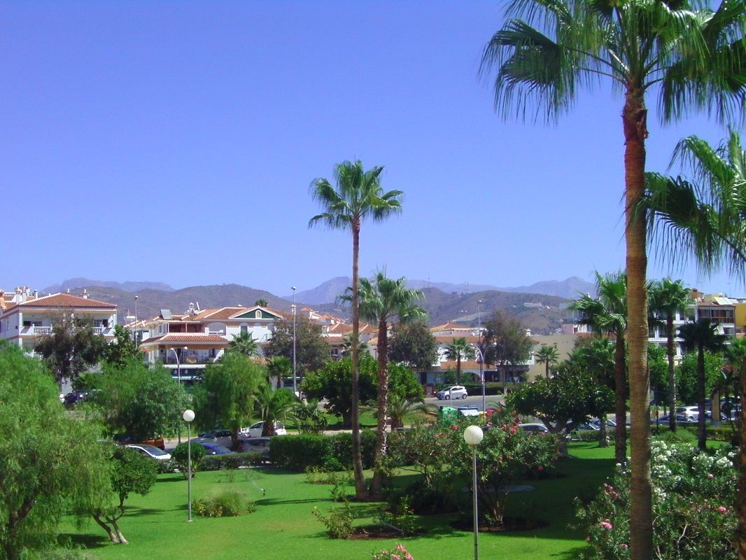 Ausblick vom Balkon (Berge u. Garten)