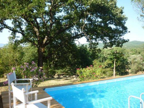 Der Pool, eine erfrischende Wohltat