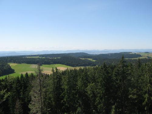 Blick vom Engelschwander Aussichtsturm