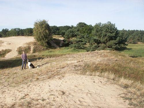 Dünenlandschaft am Grundstück