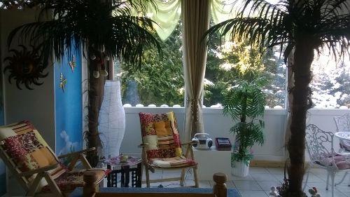 Sauna-Ruheraum /entspannen unter Palmen