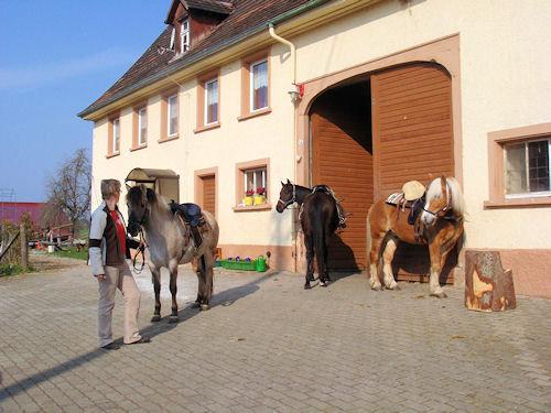 Detailbild von Ferienwohnung Bachbubenhof