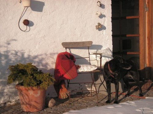 Ein erstes Sonnenbad auf der Terrasse