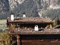 Zinnhäusl in Inneralpbach 50 - kleines Detailbild