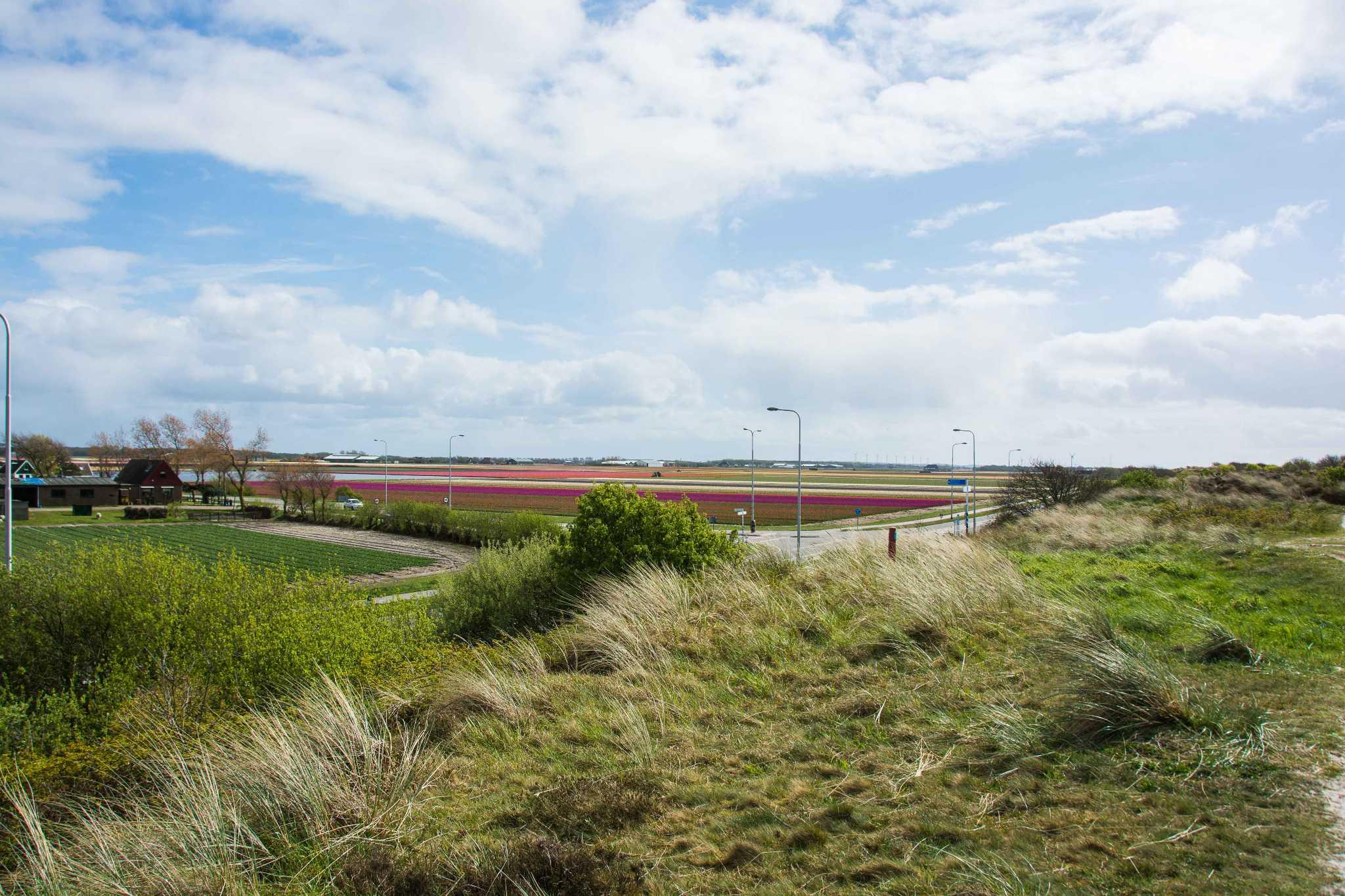 Landschaft in Callantsoog