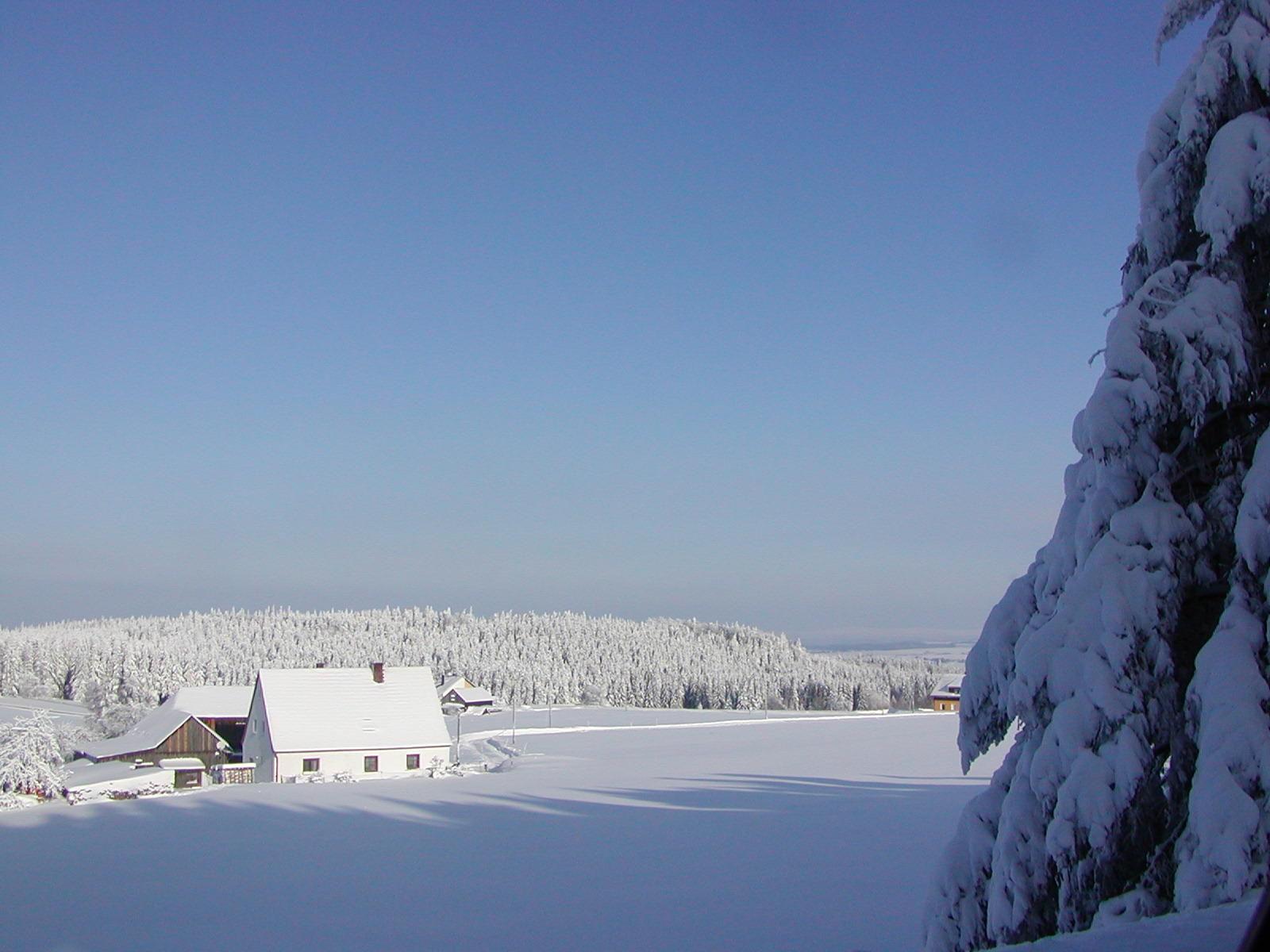 Naturpool mit Kneippanlage, Sauna