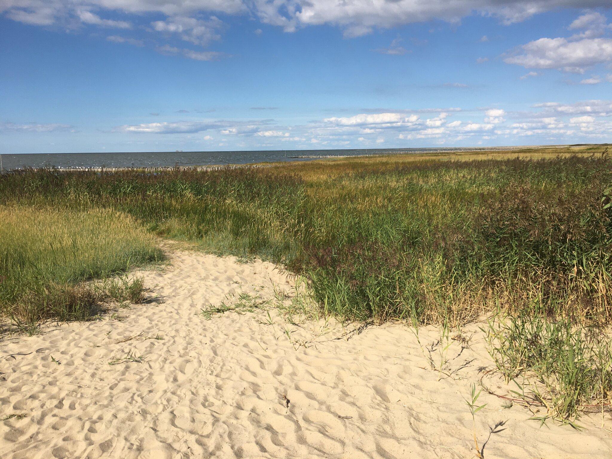 Gem�tlichkeit /Strandkorb/ Essen/ Sonne
