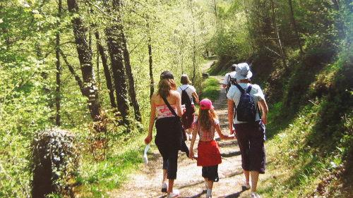Wandern auf dem Dinkelberg