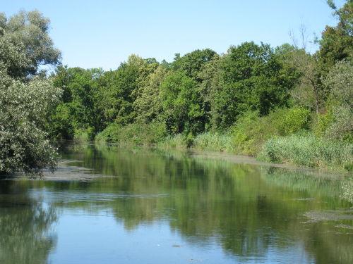 Rheinauen, Boot- und Kanufahren, Baden