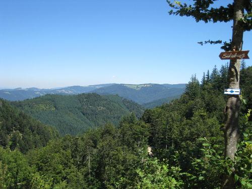 Aussicht Kälbelescheuer/Schwarzwald