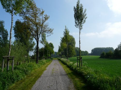 Zufahrt Wiesenhof