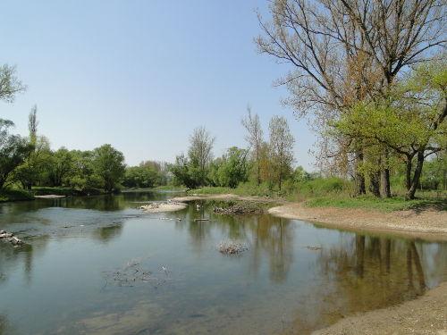 Flussparadies Franken der Main bei Ebing