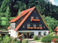 Ferienwohnung Lyhs in Fehrenbach - kleines Detailbild