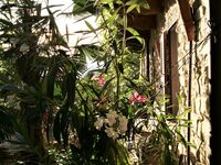 Cascina Madia - Apartment Dolcetto in Prunetto - kleines Detailbild