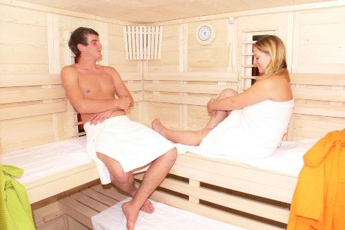 Sauna, Dampfsauna und Infrarot