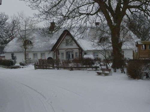 Urlaub unter Reet im Winter