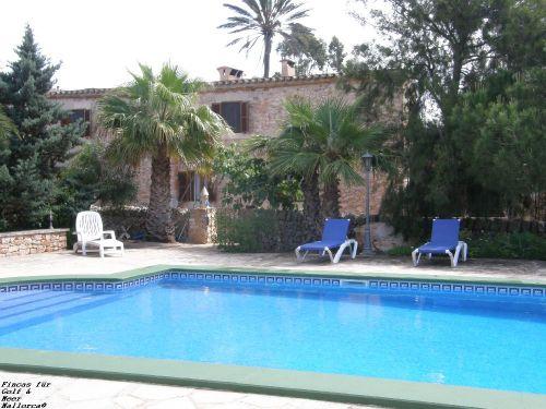 Pool mit viel Platz zum Sonnen & Relaxen