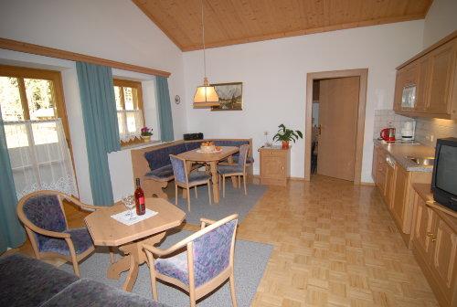 Wohnraum mit Küche - große Ferienwohnung