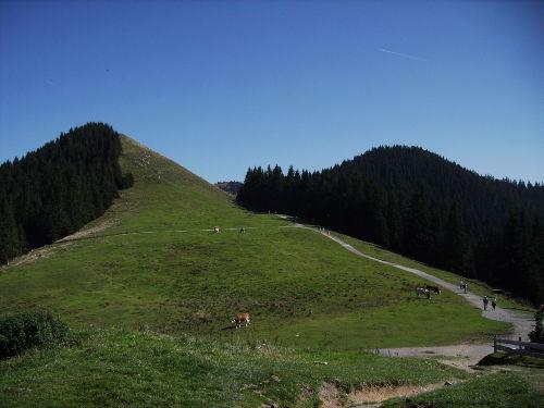 Hausberg Hördle ca: 50 Minuten zu Fuß
