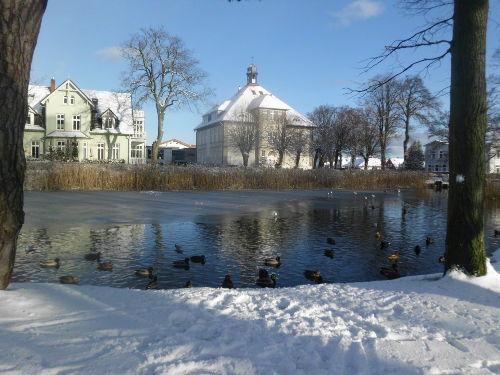Winter am nahen Stadtteich