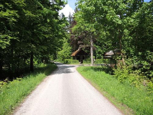 Wald-/Wanderwege um Rieneck