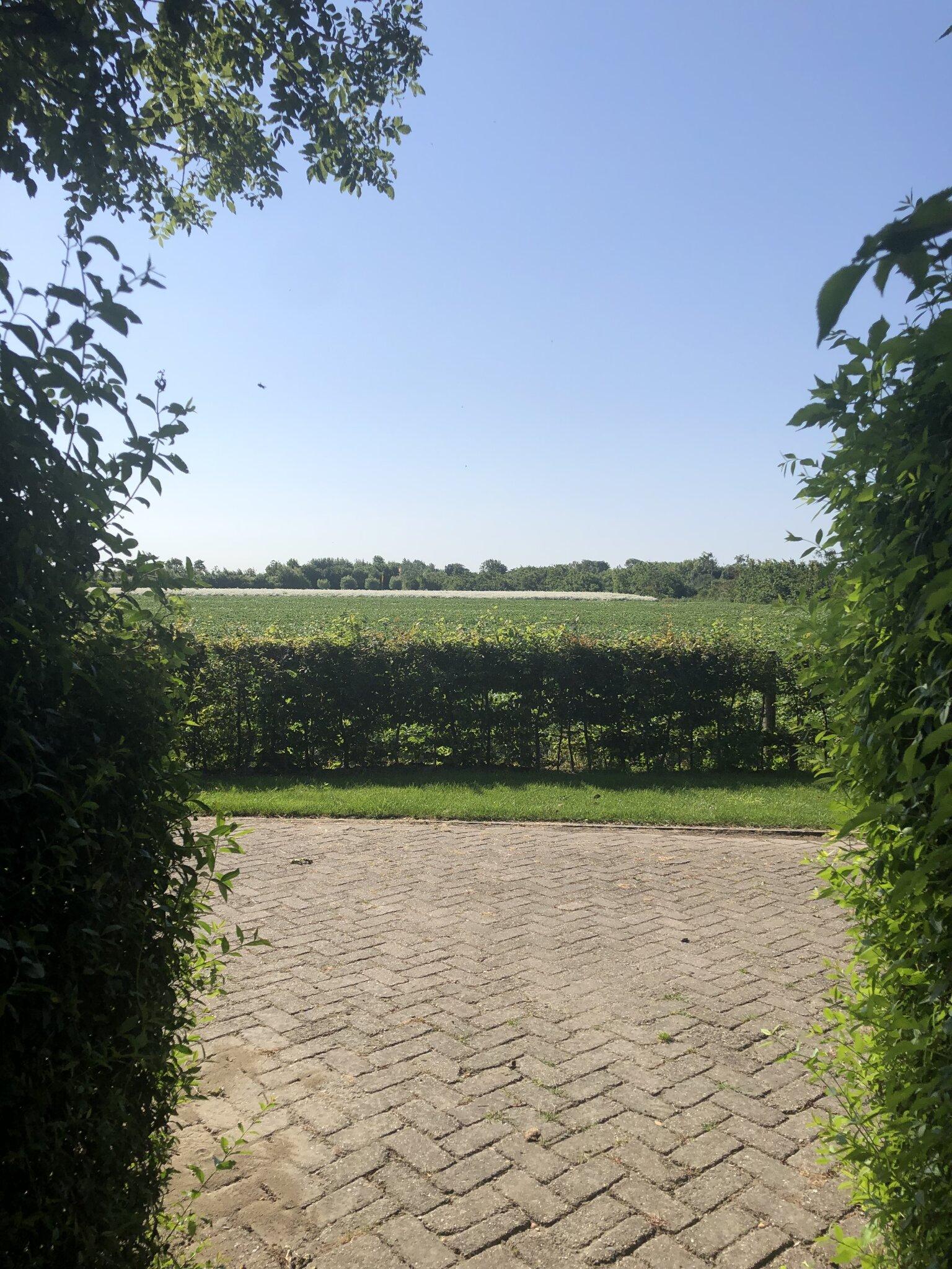 Zusatzbild Nr. 13 von Apartment Paulusweg 24