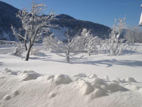 Garten haus Waldheim Winter