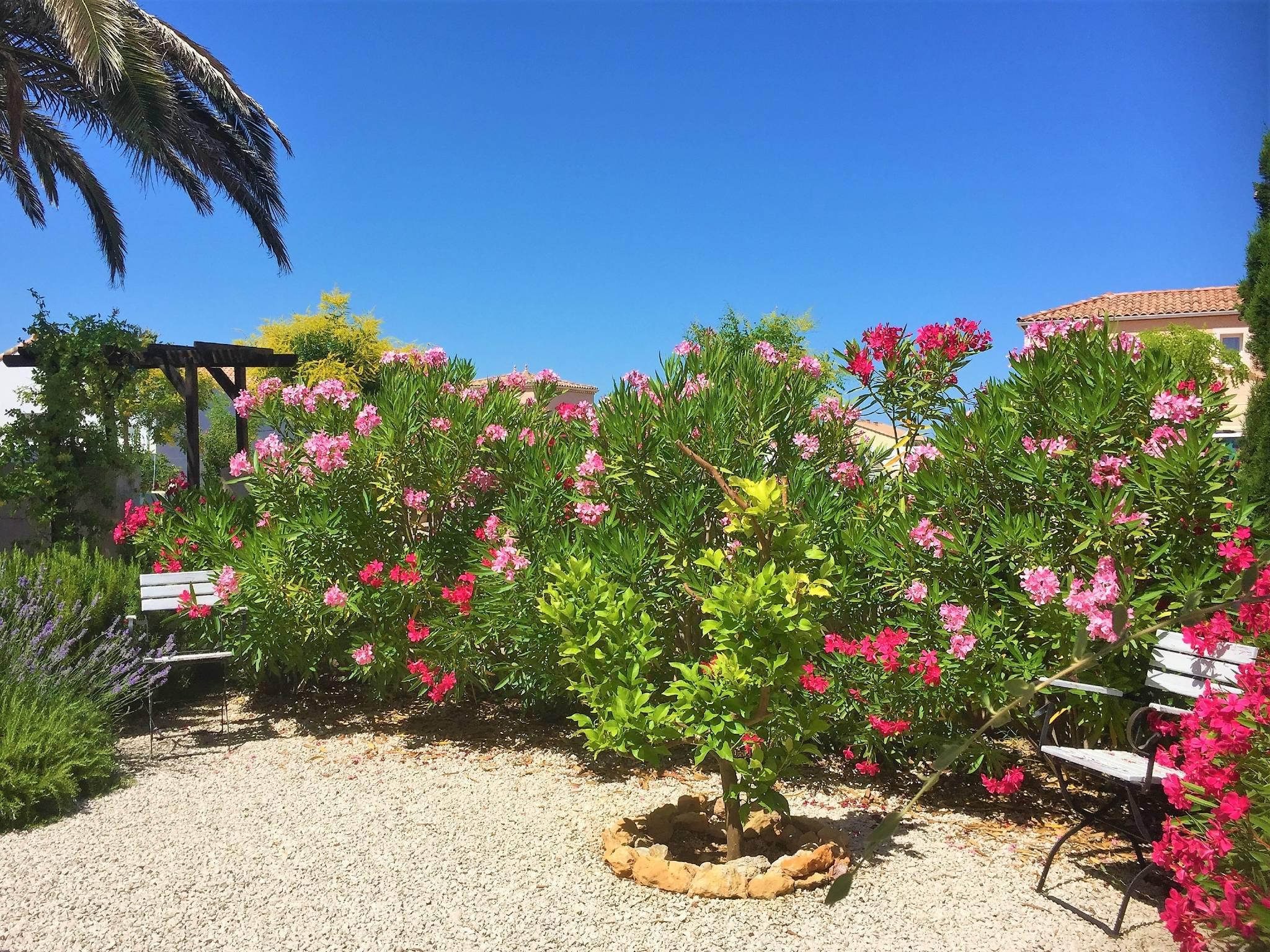 Mediterraner Garten Haus in Marseillan