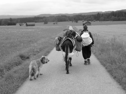 Wanderung mit unseren Eseln nach Italien